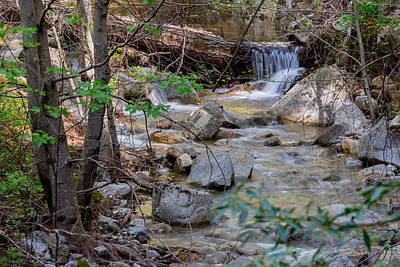Photograph - Babbling Brook by Derek Dean