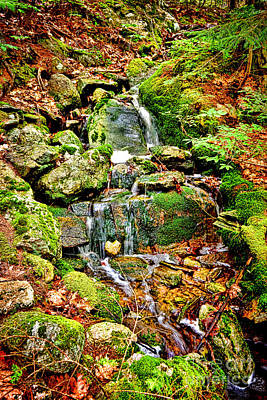 Babbling Brook Art Print by Olivier Le Queinec