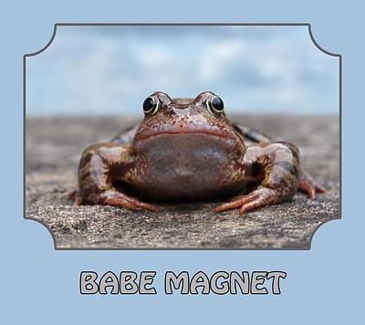 Photograph - Babe Magnet - Blues by Gill Billington