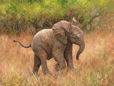 Animals Paintings - Baby African Elelphant by David Stribbling