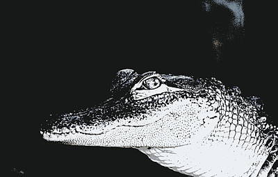 Alligator Mixed Media - Baby Alligator  by Ines Ganteaume