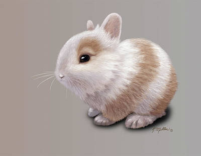 Painting - Baby Bunny by Kathie Miller