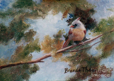 Painting - Baby Cardinal by Brenda Thour