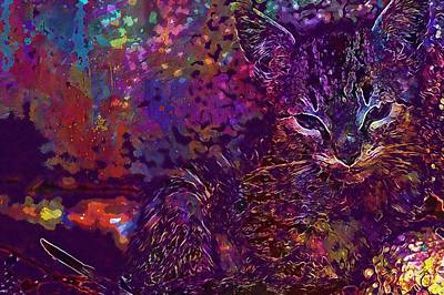 Digital Art - Baby Cat Dear Domestic Cat  by PixBreak Art