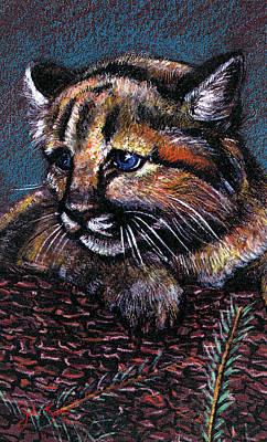 Baby Cougar Art Print by John Keaton