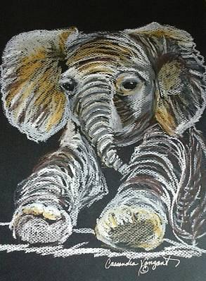 Painting - Baby Elephant by Cassandra Vanzant