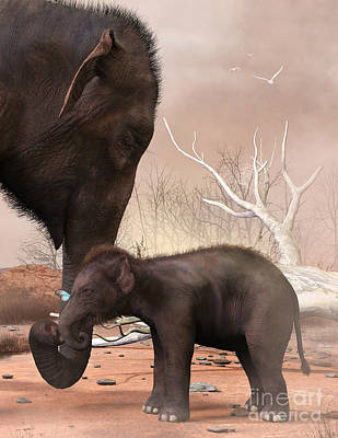 Digital Art - Baby Elephant by Elle Arden Walby