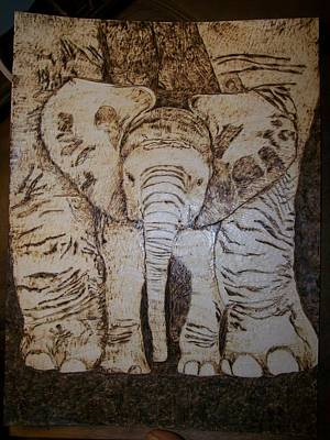 Baby Elephant Pyrographics On Paper Original By Pigatopia Art Print by Shannon Ivins
