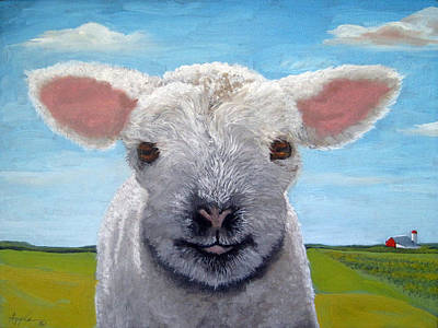 Baby Farm Lamb Sheep  Art Print by Linda Apple