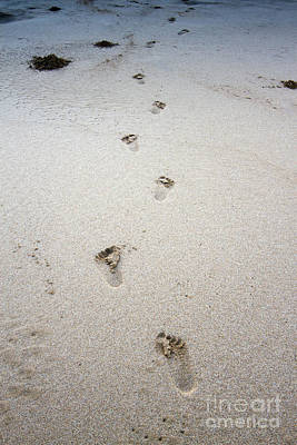 Baby Footprints In The Sand Print by Dustin K Ryan