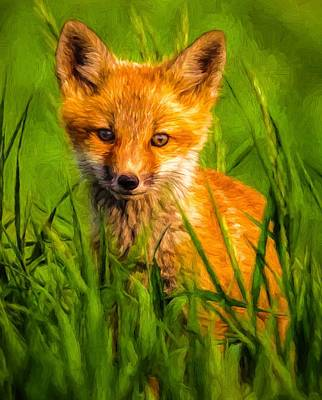 Digital Art - Baby Fox by Kaylee Mason
