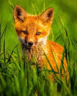 Digital Art - Baby Fox by Kaylee Mason