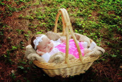 Photograph - Baby In A Basket by Trina Ansel