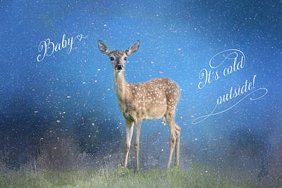 Baby It's Cold Outside With Script Print by Lynn Bauer