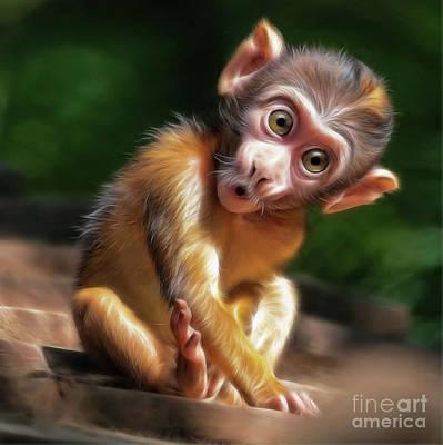 Cute Monkey Drawing - Baby Monkey by Silvio Schoisswohl