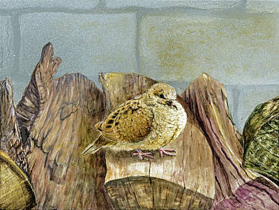 Painting - Baby Mourning Dove Fluffing On The Woodpile by Carol Hanna