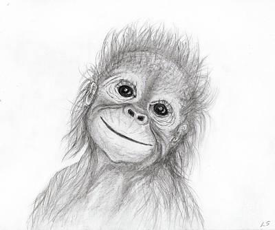 Orangutan Drawing - Baby Orangutan by Sergey Lukashin
