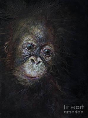 Orangutan Wall Art - Painting - Baby Orangutan Three by Odile Kidd