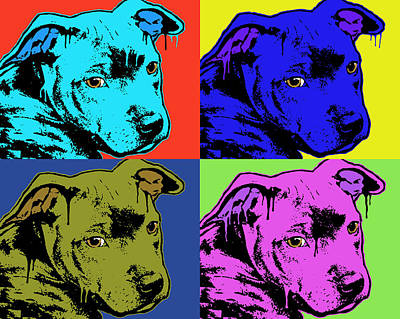 Pitbull Wall Art - Painting - Baby Pit Face by Dean Russo