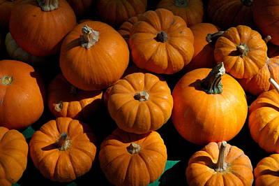 Photograph - Baby Pumpkin Stack by Teresa Blanton