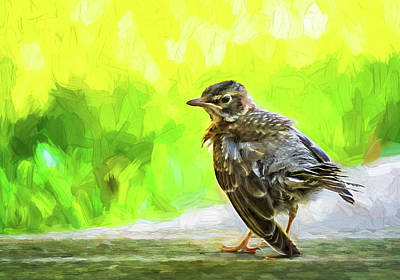 Photograph - Baby Robin - Fresh From The Nest 2 - Paint by Steve Harrington