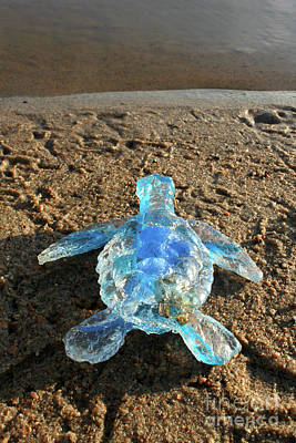 Sculpture - Baby Sea Turtle From The Feral Plastic Series By Adam Long Sculp by Adam Long