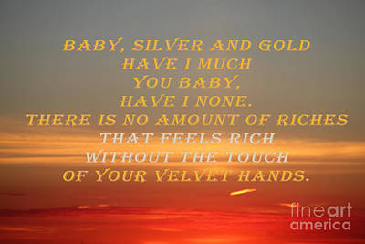 Photograph - Baby Silver And Gold Have I by Donna L Munro