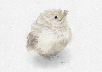 Painting - Baby Sparrow by Kathie Miller