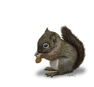 Digital Art - Baby Squirrel  by Kathie Miller