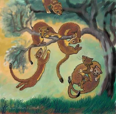 Drawing - Baby Weasels Playing In Sagebrush by Dawn Senior-Trask