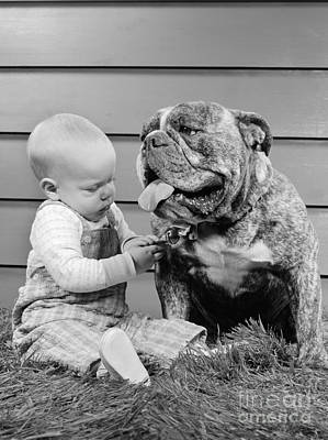 Best Friend Photograph - Baby With Bulldog, C.1950-60s by H. Armstrong Roberts/ClassicStock