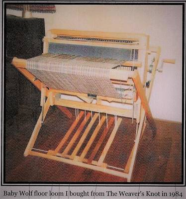 Photograph - Baby Wolf Loom by Denise Fulmer