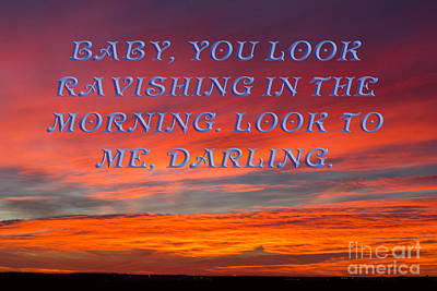 Photograph - Baby You Look Ravishing by Donna L Munro