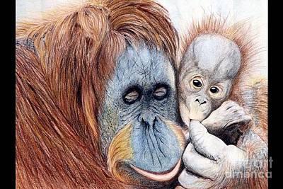 Baby Orangutan Drawing - Babylove by Dipali Shah