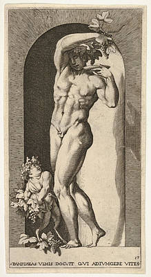 Drawing - Bacchus  by Giovanni Jacopo Caraglio