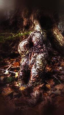 Photograph - Bach by Isabella F Abbie Shores