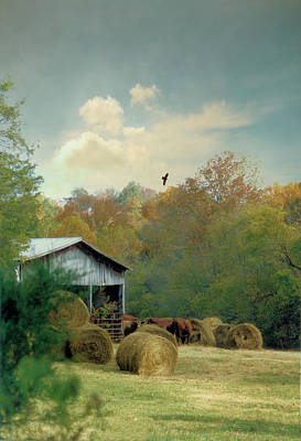 Tennessee Hay Bales Photograph - Back At The Barn Again by Jan Amiss Photography