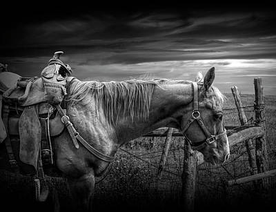 Photograph - Back At The Ranch In Black And White by Randall Nyhof