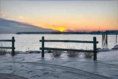 Connecticut Winter Photograph - Back Bay by Diana Angstadt