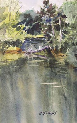 Fresh Water Painting - Back Bay by Kris Parins