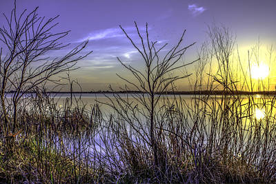 Photograph - Back Bay Sunset II by Pete Federico