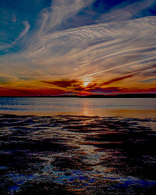 Photograph - Back Bay Swirls II by Pete Federico