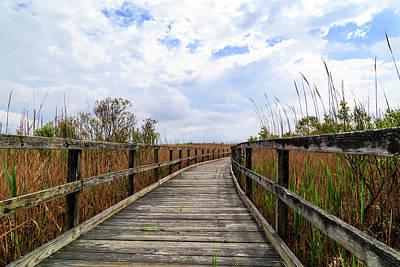 Photograph - Back Bay Trail by Steve Stephenson