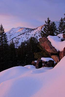 Photograph - Back Country Glow by Sean Sarsfield