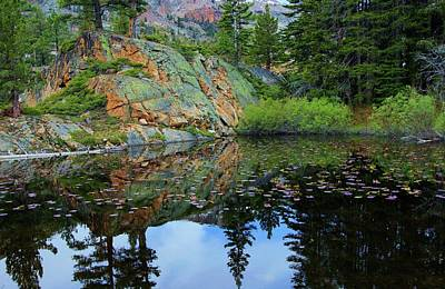 Photograph - Back Country Lily Pond by Sean Sarsfield