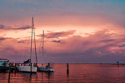 Photograph - Back Creek - Annapolis by Dana Sohr