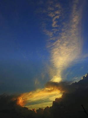 Photograph - Back Door To Heaven by Laura Ragland