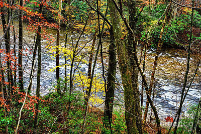 Photograph - Back Fork Of Elk River Autumn by Thomas R Fletcher
