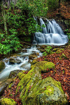 West Fork Photograph - Back Fork Waterfall  by Thomas R Fletcher