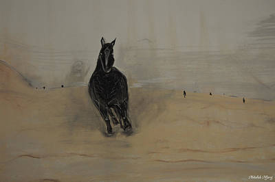 Clear Sky Drawing - Black Horse by Abdullah Alfaraj